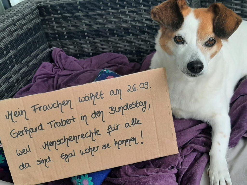 Mitmach-Aktion: Hund mit Pappe auf dem ein Grund für die Wahl steht.