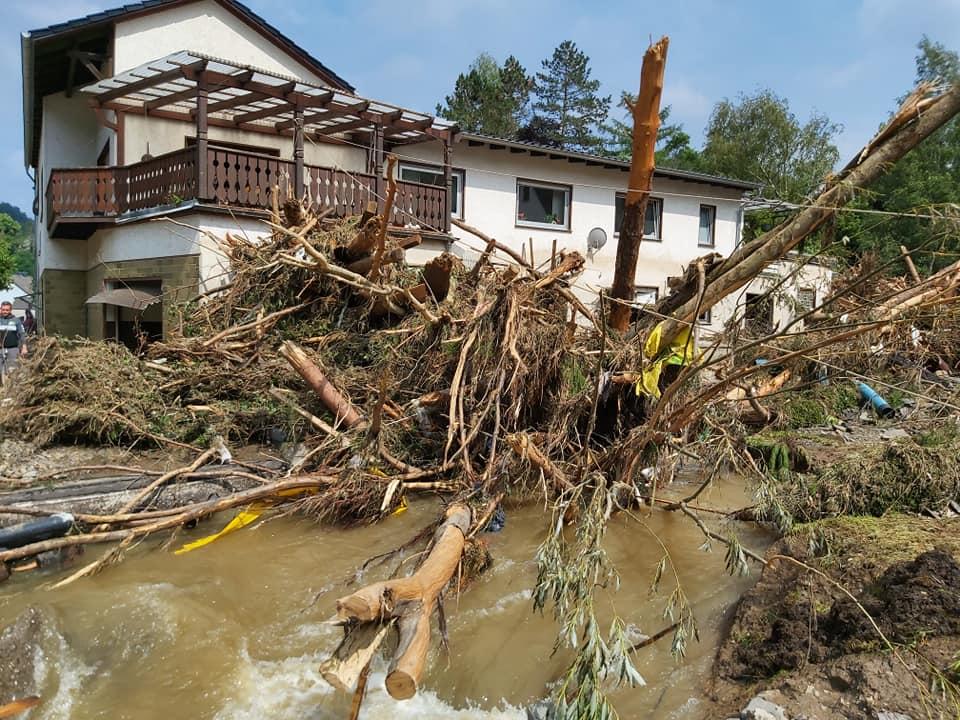 Bild vom Flut-Katastrophengebiet mit entwurzelten Bäumen vor einem Haus.