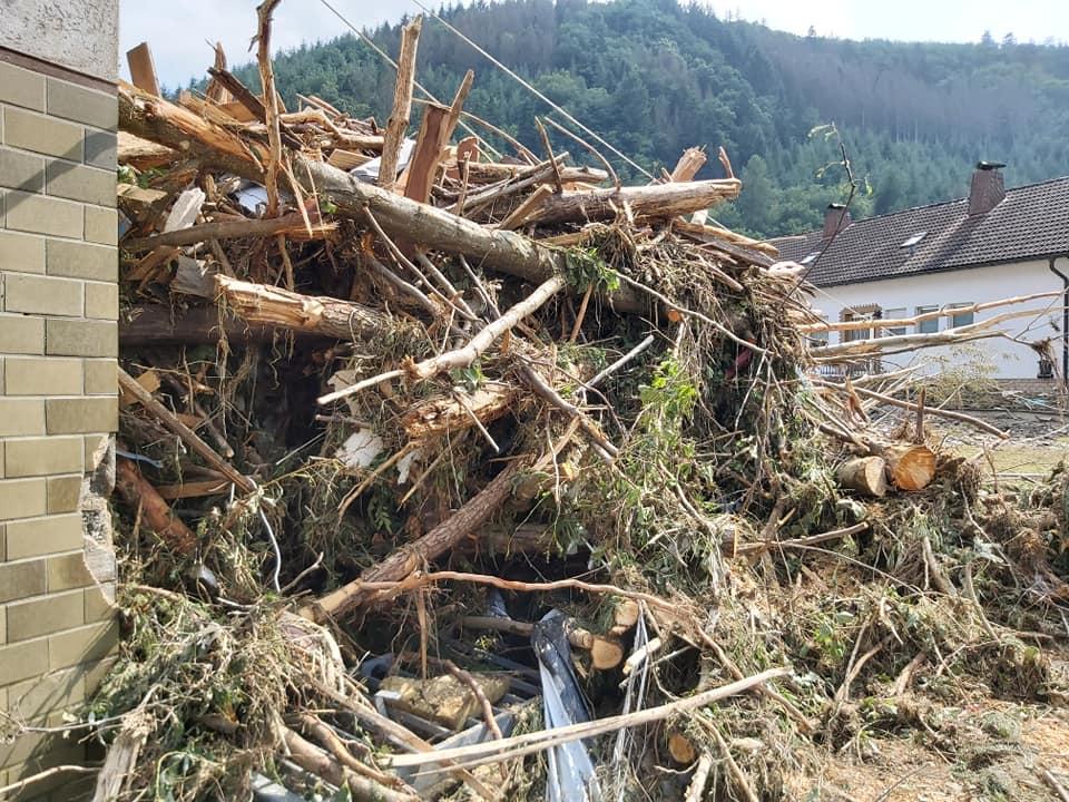 Bild vom Flut-Katastrophengebiet mit entwurzelten Bäumen.