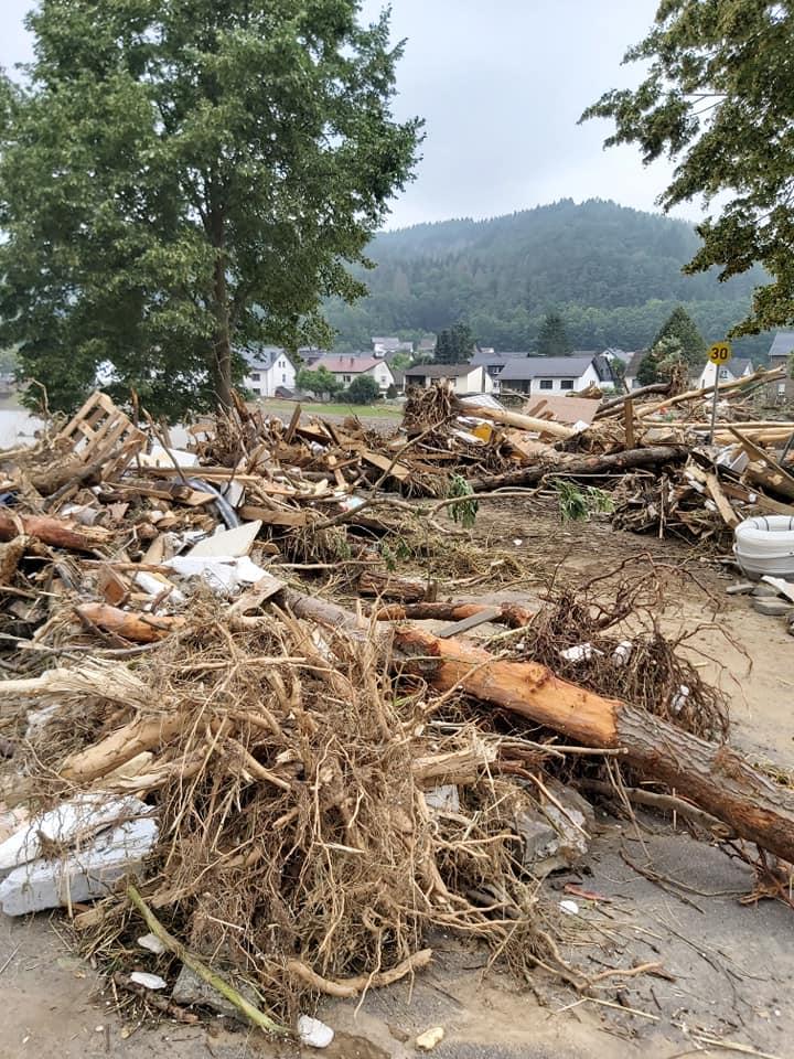 Bild vom Flut-Katastrophengebiet mit zahlreichen entwurzelten Bäumen.